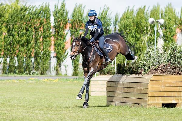 Ma Horses Waregem 2017