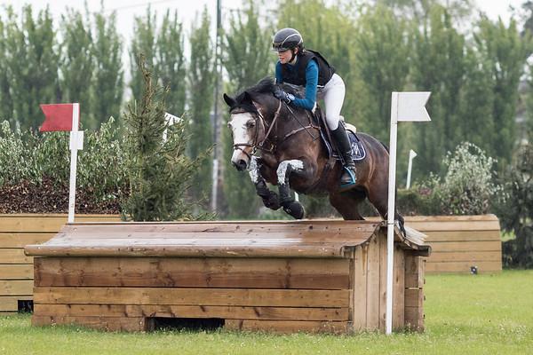 PM Ponies Waregem 2017