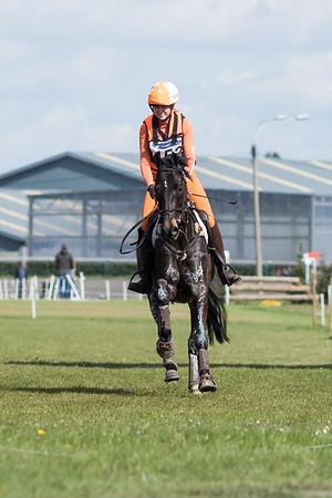 Zo Horses Waregem 2017