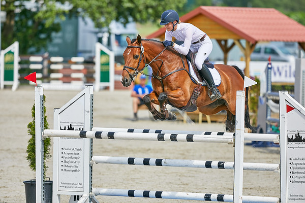 190602 CCI3*-L Jumping Renswoude