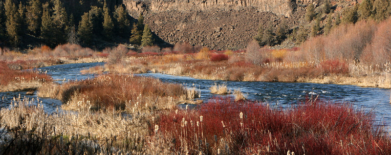 Spring on the Deschutes by Sue Anderson.