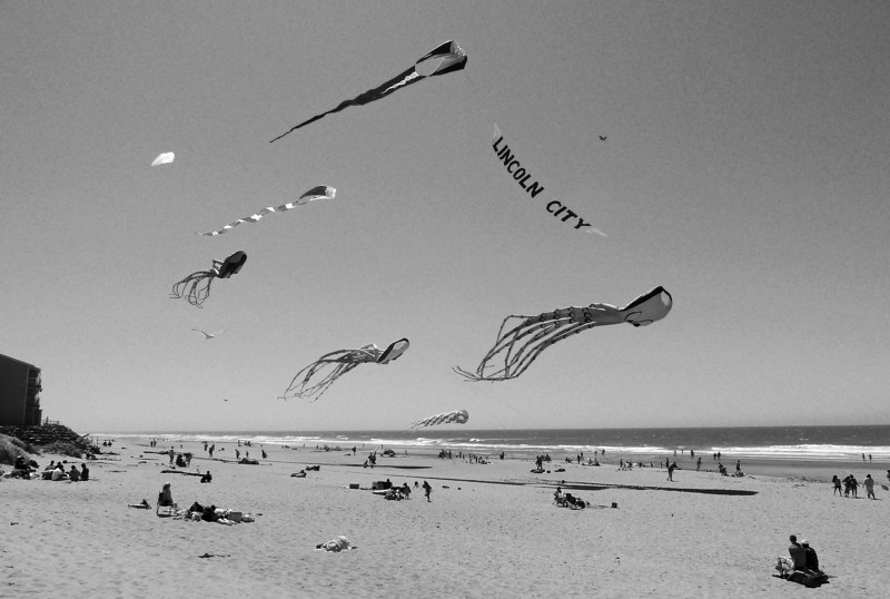 2011-07-23  B & W Giant Kites 053_edited-1
