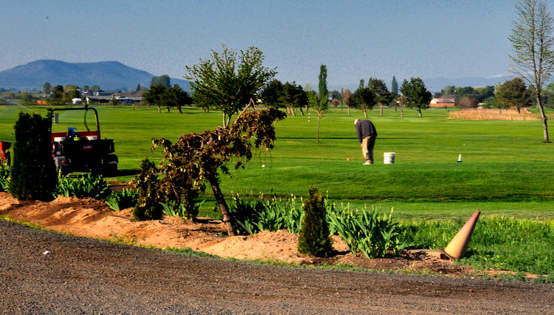 0804 Resetting the Tee for another day of golf.  Madras, Oregon - Bill Volmer