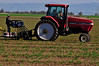 0901, Applying individual drip irrigation tubes in a carrot field. Madras, Oregon - Bill Volmer