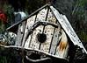 birdhouse2 jpg_katheyH