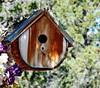 birdhouse jpg_katheyH