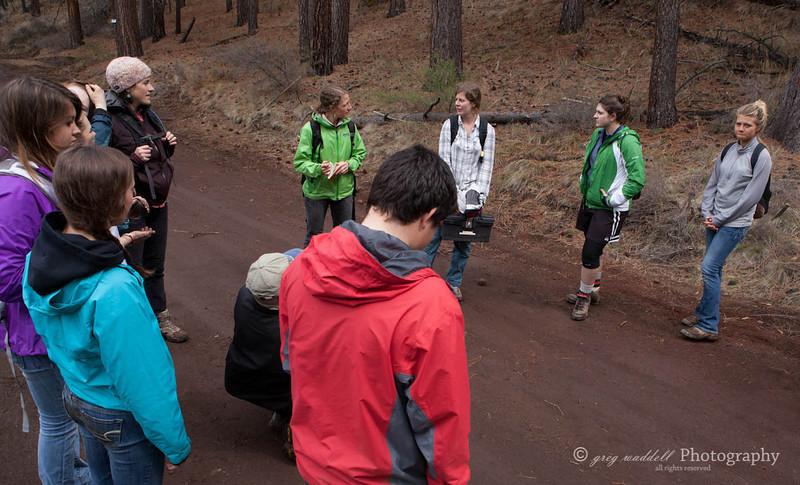 Deshutes Land - Wolftree-3581