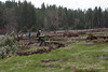 Deshutes Land - Wolftree-3505