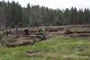 Deshutes Land - Wolftree-3508
