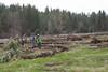 Deshutes Land - Wolftree-3504