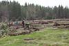 Deshutes Land - Wolftree-3506