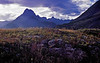For Purple Mountains Majesties.2_Fred Fost.jpg