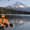 Mt Hood and Lost Lake  Bill Vollmer