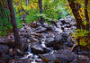 Bridal Veil Stream  greg waddell