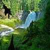 Sandy Koch--Sahalie Falls
