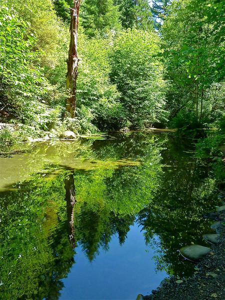 Belknap Springs--Sandy Koch