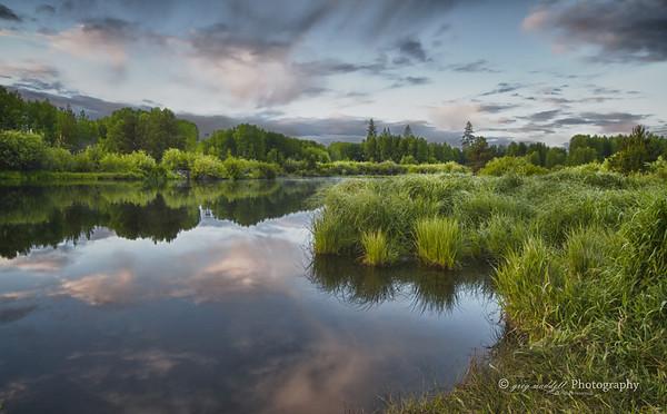 Dillon Falls Meadow  greg waddell