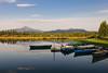 BBR, Lake Phalarope, Curtiss Abbott