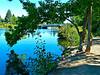 mirror pond near pine tavern-Sandy koch