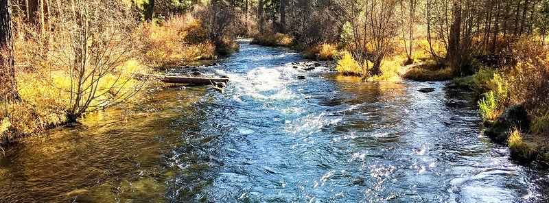 The Rolling Metolius River