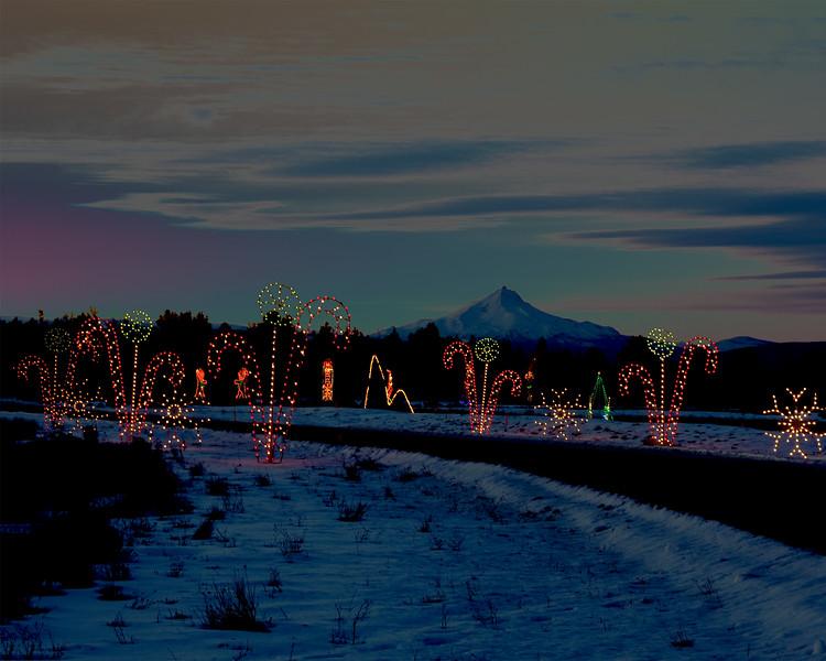 Christmas Lights (before LR)