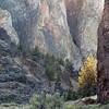 Darlene Ashley -- Ancient Cliffs