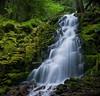 White Branch Falls, Kate Thomas Keown