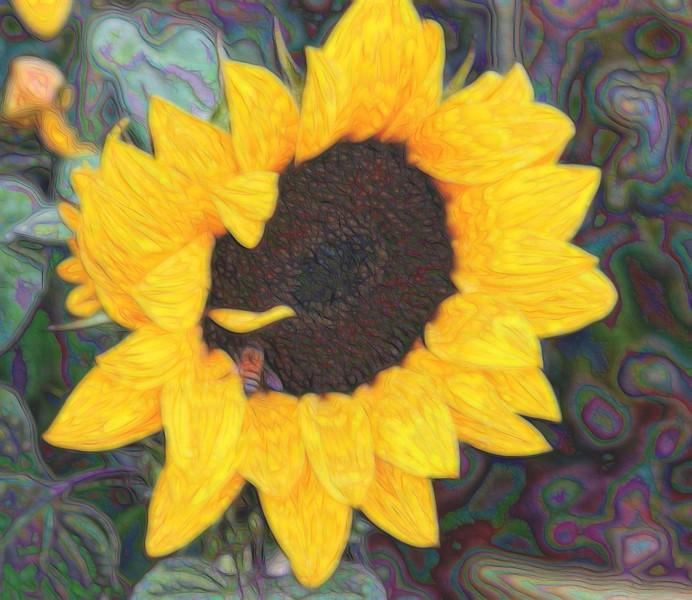 T_1BeeSunflower inside.jpg