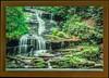 Tom Branch Lower Falls