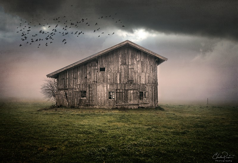 Abandoned Farm Barn