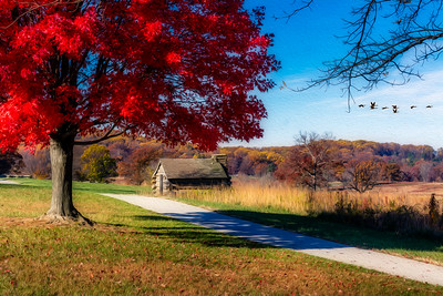 Colonial Autumn Valley Forge