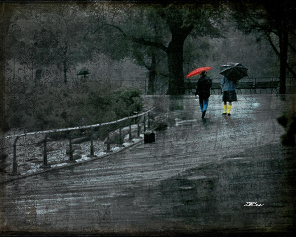 A Rainy Day in Copenhagan