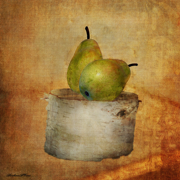 Pears on the Birch