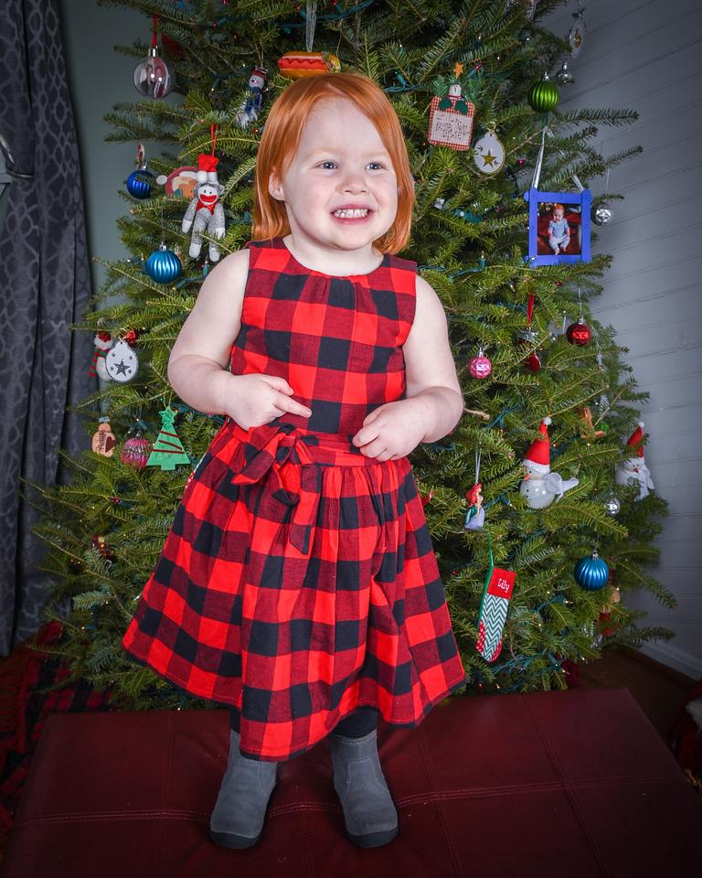 2017-12-11_Copsey Family Xmas-013