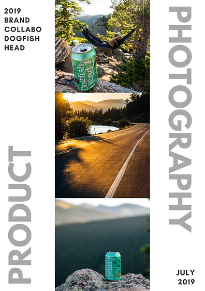 Influencer Brand Project Summary: Dogfish Head (July 2019)