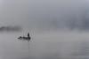 09-22-2018-fog_(13_of_14)