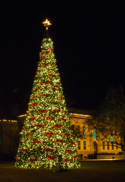 On the vernal equinox  I did my annual holiday-light shoot which took me to the courthouse in Kerrville. That is one tall tree . . . and it's plastic!! Amazing!  December, 2016.