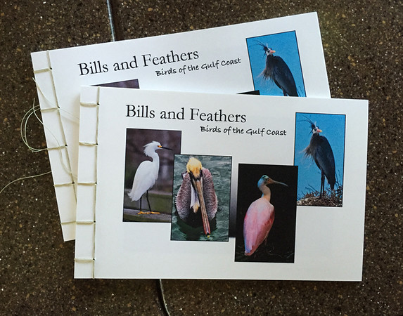 I organized and printed these books of photos to solve the problem of what to give Larry and Trish in Florida.  They have many of the same birds there as I shoot on the Texas Gulf Coast.  I really need to do more of these as I love making books.  Aaah, that ugly procrastination.  ;-/  March, 2016.
