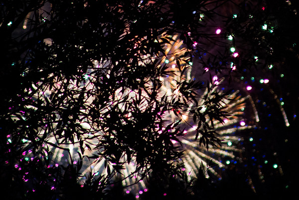 I found fireworks at Whitefish after passing on Hungry Horse where people shoot off their purchases at random along the highway.  Seemed a little risky to me.  The ones in Whitefish were average and I tried shooting them through the trees.  Fun night with fireworks everywhere.  July, 2016.