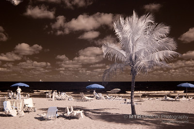 Fort Lauderdale, FL, Infrared