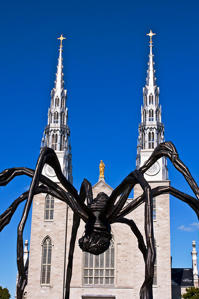 Louise Bourgeois' sculpture, Maman, on the plaza of the National Gallery of Canada, Ottawa, sits across the street from Notre-Dame Cathedral Basilica. An interesting juxtaposition! August, 2009. Addition: She died May 31, 2010, at 98 years old.