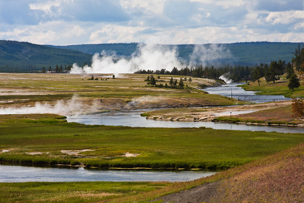 View of thermal activity in the Firehole River valley at Yellowstone NP. July, 2009.