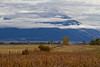 Another shot of mountains, clouds, and cattails in Paradise Valley, MT.  October, 2015.