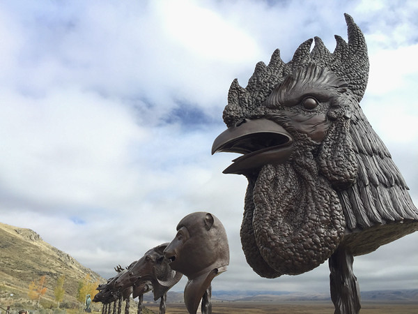 Another favorite place to visit is the National Museum of Wildlife Art in Jackson Hole, WY. A bonus this trip was the Zodiac Heads exhibit by Ai Weiwei, the Chinese artist/activist. Very impressive.  October, 2015.