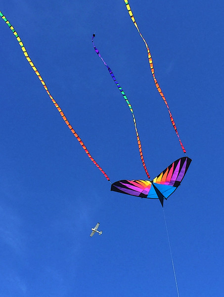 Jinx and I went to the Port Aransas Beach Drive and happened upon several people flying kites on a beautiful warm, sunny day. The small private plane was a lucky catch.  February, 2015.