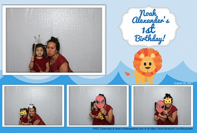 Noah's 1st Birthday