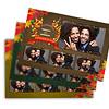 1002 - Beautiful Autumn Postcard