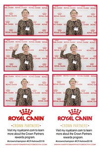 Royal Canin-CFA Show 2015