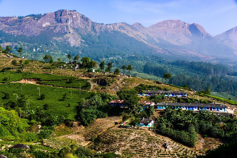 Munnar - the tea plantations and mountains - beautiful