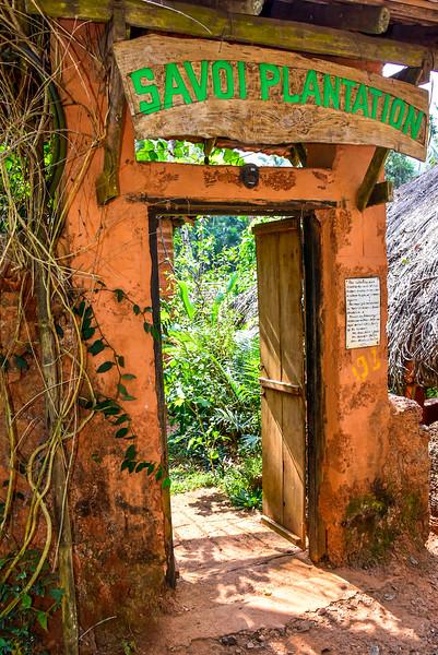Goa - entrance to the plantation